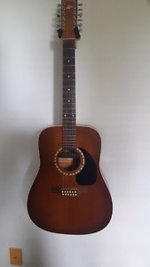 Art & Lutherie 12 string with pickup