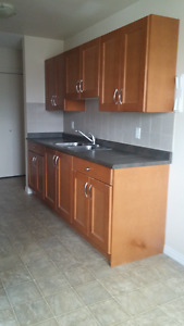 Two bedroom apartment for rent at 11940-104 Street NW Edmonton Edmonton Area image 5