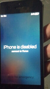 Black and grey iPhone 5s
