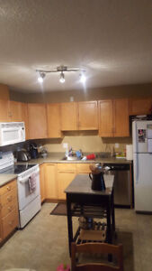 Spacious 1 bedroom Condo in Lewis Estates