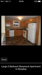 Beautiful 2 Bedroom Basement Apartment In Paradise