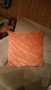2 - 24x 24 lg accent pillows