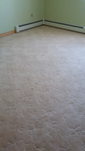 Used Carpet, Off white, good condition