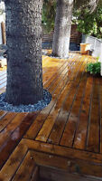 Affordable Patios, Walkways and Landscape Work