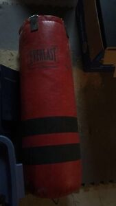 Everlast punching bag