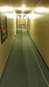 Professional Steam Carpet Cleaning      519.701.0549 London Ontario image 9