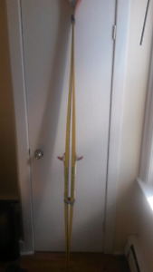 Cross country Skis, poles, and boots! (Size 42)