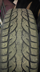 Winter Tires just like new