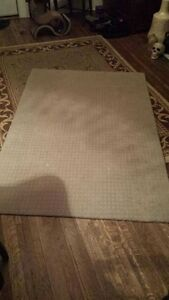 LARGE AREA RUG - $20