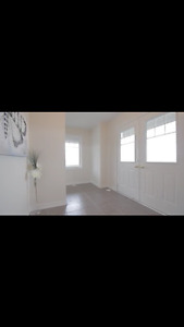 BRAND NEW pet friend gorgeous 3 +1 bedroom for rent @Bovaird/410