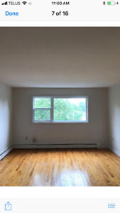 Free Early Move In! Large 2BR! Oct 1 Lease! Small Dog Friendly!