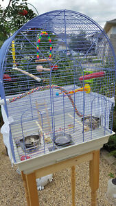 Great Home for Budgies!!
