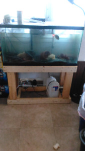 40 gallon and stand