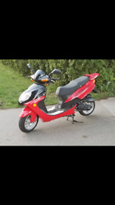 Scooter 2008 Geely