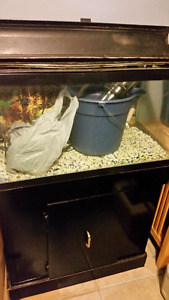 Good starter 20 gal fish tank/stand, needs filter system