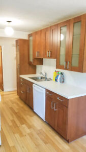 Clean quiet, freshly renovated apart. in popular Pleasantview