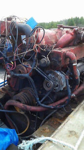 FORD SENATOR DEISEL ENGINE