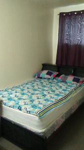 Female student needed for 2 bedroom apartment