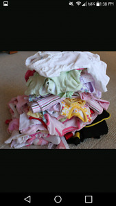 50+ items of baby girl clothes 12-18mnths
