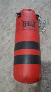 25 lb punching bag