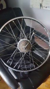 "24"" Rim with 250w motor and gears."