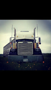 2001 Freightliner Classic