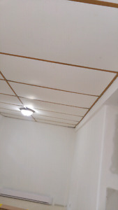 Drop ceiling about 600 sq feet