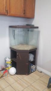 45 gallon corner tank, stand$165 OBO