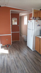 Newly Renovated 3 Bedroom Mini home 14*66 on large Owned Lot