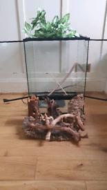 Exoterra Reptile Vivarium (45×45x60cm) + Reptile Thermostat