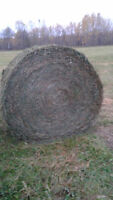 1st and Second cut Round bales for Sale