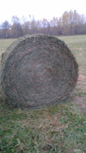 1st and 2nd cut Round bales for Sale