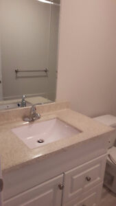 Renting a New Brand  Bedroom in a Basement of a house. Kitchener / Waterloo Kitchener Area image 6
