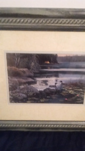 Framed print of loons on a lake