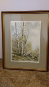 Birch Trees Picture