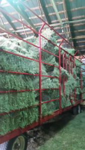 Quality 1st Cut Hay - Small Squares