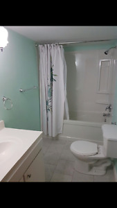 All inclusive fully furnished sublet