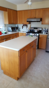 Kitchen and Bathroom Cabinets, Vanities and Countertops