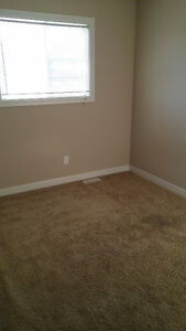 spruce grove room available to rent