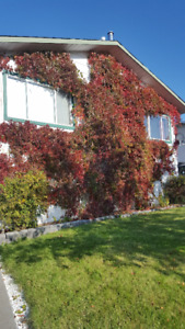 REDUCED! Beautiful home with amazing lake views in Fraser Lake!