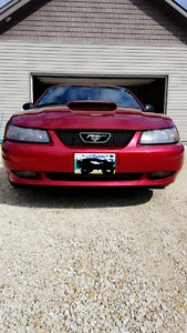 2004 mustang gt 40th anniversary Excellent shape Very Low Kms!!!