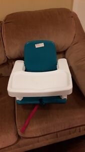 Early Years Booster Seat