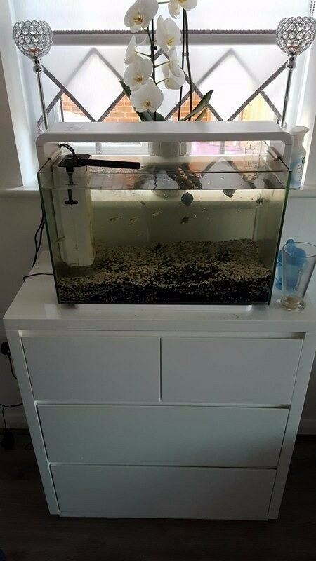 Modern white fish tank 60litres superfish home 40 for Koi pond heaters for sale
