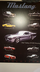 affiche mustang shelby