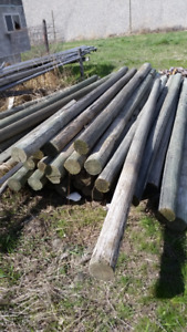 12' treated fence posts. security, deer, wildlife