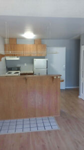 North Edm Suite for rent - 1 bedroom + Den - Close to Yellowhead