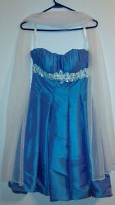 Holiday/Prom Dress (Size 4)