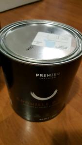 Premier Infinity eggshell paint