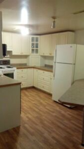 Legalized 2 Bedroom Basement Suite Available Oct. 1st