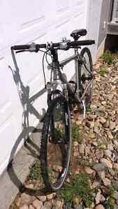 Nishiki Cross Hybrid 422 Pedal Bike